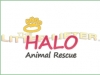 Halo Animal Rescue